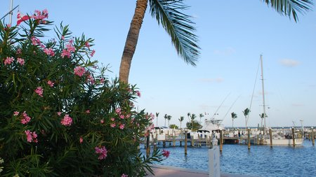 April 2012 Dream SeQueL Trip 155 -Boat Harbour Marina, Bahamas -1